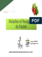 7-Maladies_et_ravageurs_du_fraisier_1_
