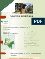 Amazonía colombiana. Deforestaciòn, crisis climática.