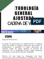 MGA- Cadena de valor1.pdf