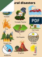Natural_disasters