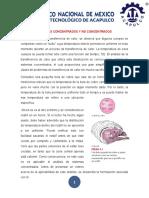 SISTEMAS CONCENTRADOS Y NO CONCENTRADOS