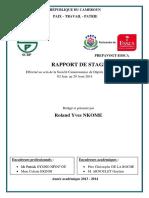 Rapport_de_stage_SCDP.pdf