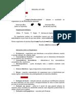 resumoglobalbiologia10ano_2