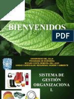 Sistema de Gestin Organizacional