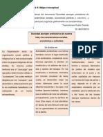 Pujols-Tayshalorisan-Mapaconceptual