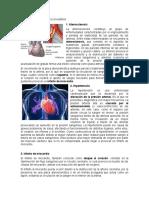 Enfermedades del sistema circulatorio.docx