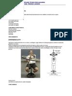TP 8 dinámica de las rotaciones.pdf