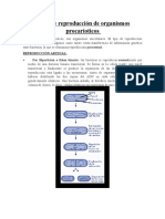 Tipos de reproducción de organismos procarioticos