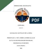 guia N 2 GIMNASIA.docx