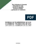 YACIMIENTOS_DE_GAS