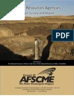 Natural Resoures Merger Survey Report