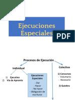 323779470-Ejecuciones-especiales-pdf.pdf