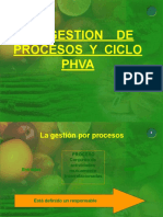 procesos phva