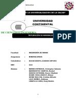 INFORME N° 04 - TRITURACION DE MINERALES