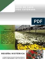 Estudio de Caso Cultivos Sayonara1