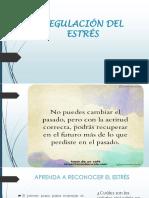 MANEJO DEL ESTRES.pdf