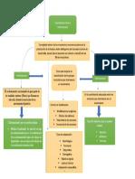 Mapa conceptual coordinación Intra e intermuscular