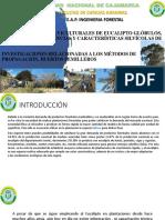 SEMANA 3 SILVICULTURA APLICADA.pdf