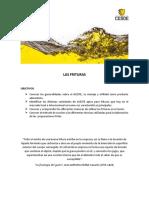 LAS_FRITURAS.pdf