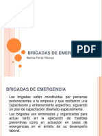 brigadas-20-clase-131112091854-phpapp02