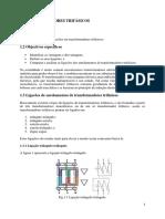 Texto 1 - Maq Elect II.pdf