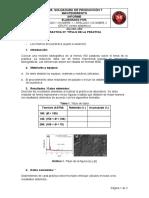 Formato de informe_LSPM