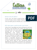 Cultura brasileña portugues.pdf