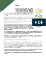 0903 MORFOLOGIA DE TALLO CEREBRAL_VST (1)