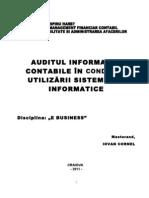 7-Auditarea-Sistemelor-Informatice_ C0RNEL