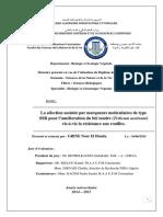 167-2015.pdf