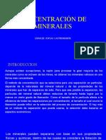 CONCENTRACIÓN DE MINERALES (1)