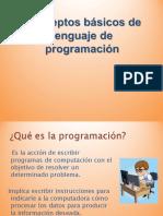 conceptos basicos programacion