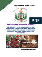PROYECTO CAFE SANTA CRUZ RIO TAMBO.pdf