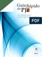 PJE Guia_cnj_para tribunais.pdf