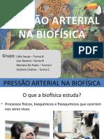PRESSÃO ARTERIAL NA BIOFÍSICA (1).pptx