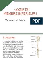 Ostéologie-mb-inf-I
