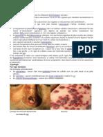 Cancer Histologie et Typologie