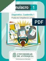 comp-lect-sim-diagnost-1.pdf