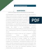 NEUROPEDAGOGÍA.docx