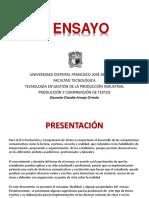 EL ENSAYO UD 2020