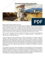 Caso-Bimbo_Int.pdf