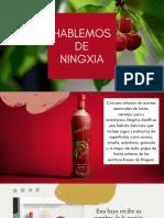 HABLEMOS DE NINGXIA RED