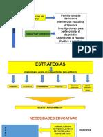 Educación Estrategias y Necesidades Educativas