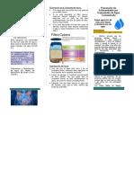 diptico de prevencion de enfermedades por transmision de agua contaminada.docx
