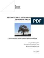 fgreene_árboles, cultura, identidades colectivas San Pedro A