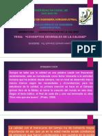 CONCEPTOS BASICOS DE CLIDAD.pptx