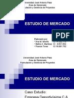 ESTUDIO DE MERCADO PPT