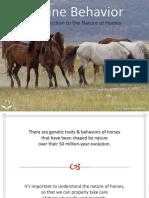 Equine_Behavior_Presentation