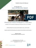 Manual de Práctica Pedagógica Ajustado 2018-convertido