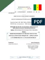 memoire Didilou V4.docx